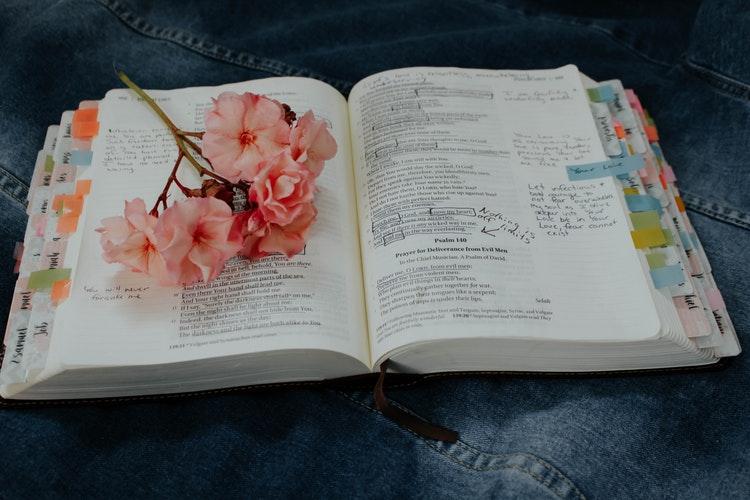 机の上に置かれた本