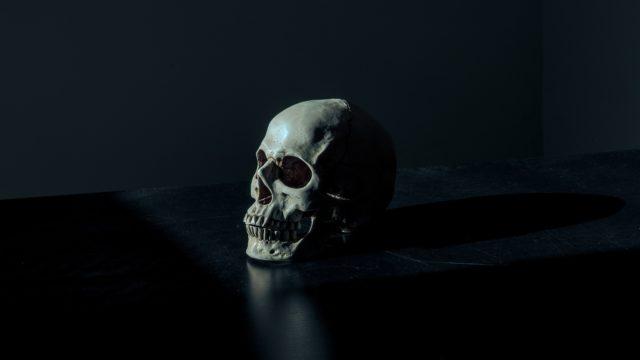 暗闇の中に置かれた骸骨